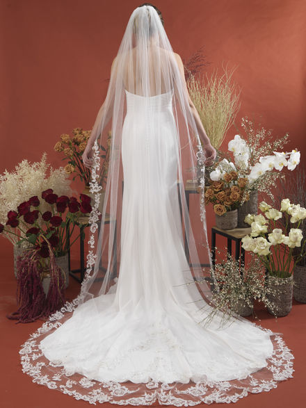 Veil Edged with Beaded Lace