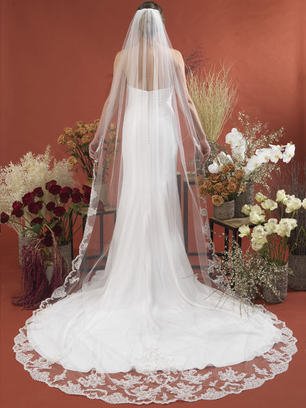 Lace Edged Veil with Train