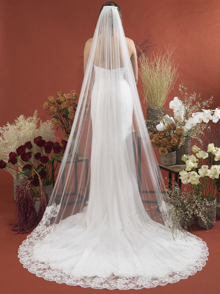 Single Tier Wide Lace Edged Bridal Veil